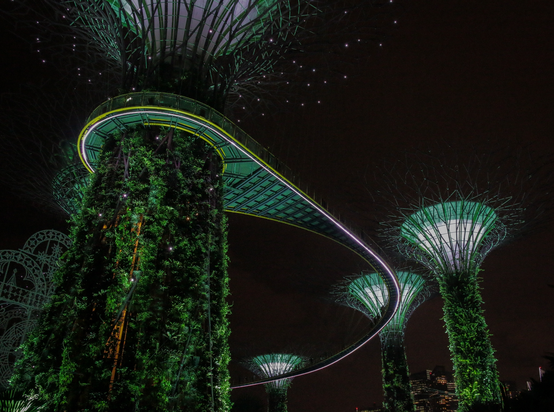 Ari Lindholm - Gardens by the bay