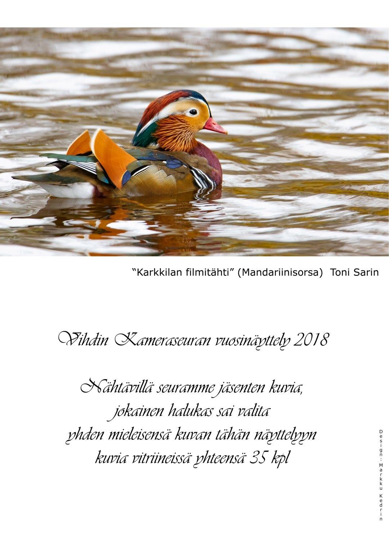 Viks_nayttelyjuliste_2018