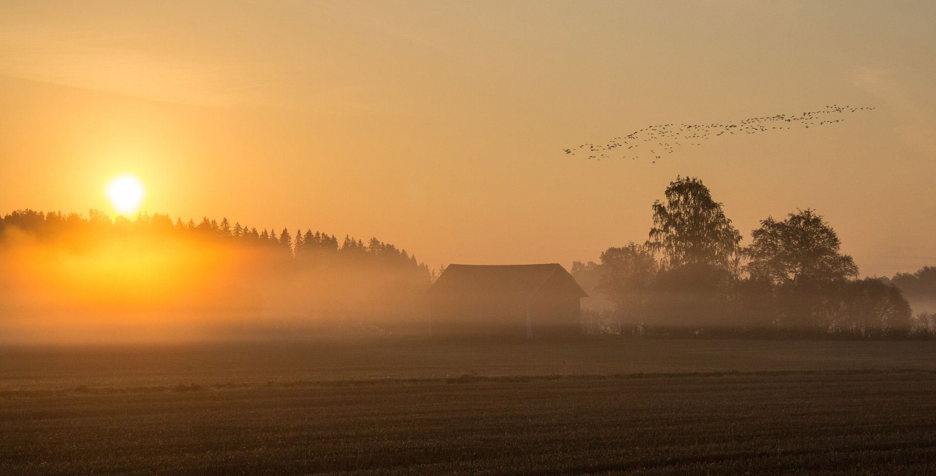 03_Aamu_Kivistossa_Vesa_Monkkonen