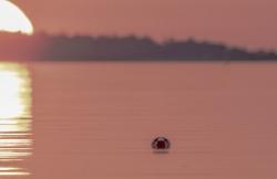 05-Henrik_Sell-Aurinko_merella